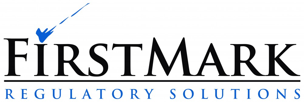FirstMark Logo high resolution